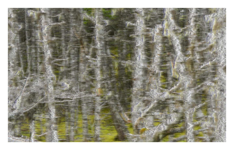Lucien Duhamel - Covid19, Deuxième vague 3