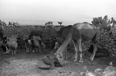 Maroc 1970-2018