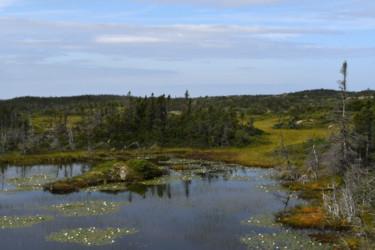 Terre-Neuve-et-Labrador-23