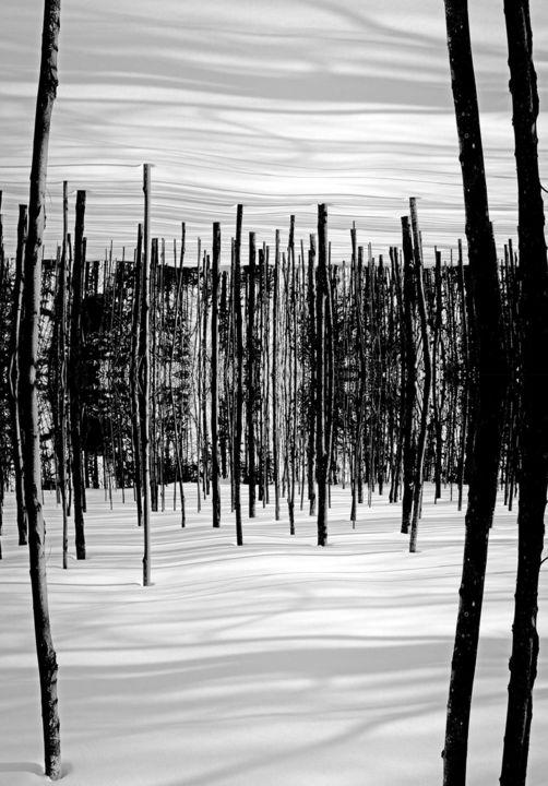 Lucien Duhamel - Forêt enchantée